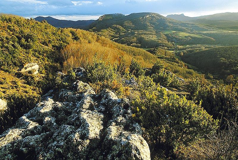 Parque natural Izki. Vista de Mantxibio. DFA